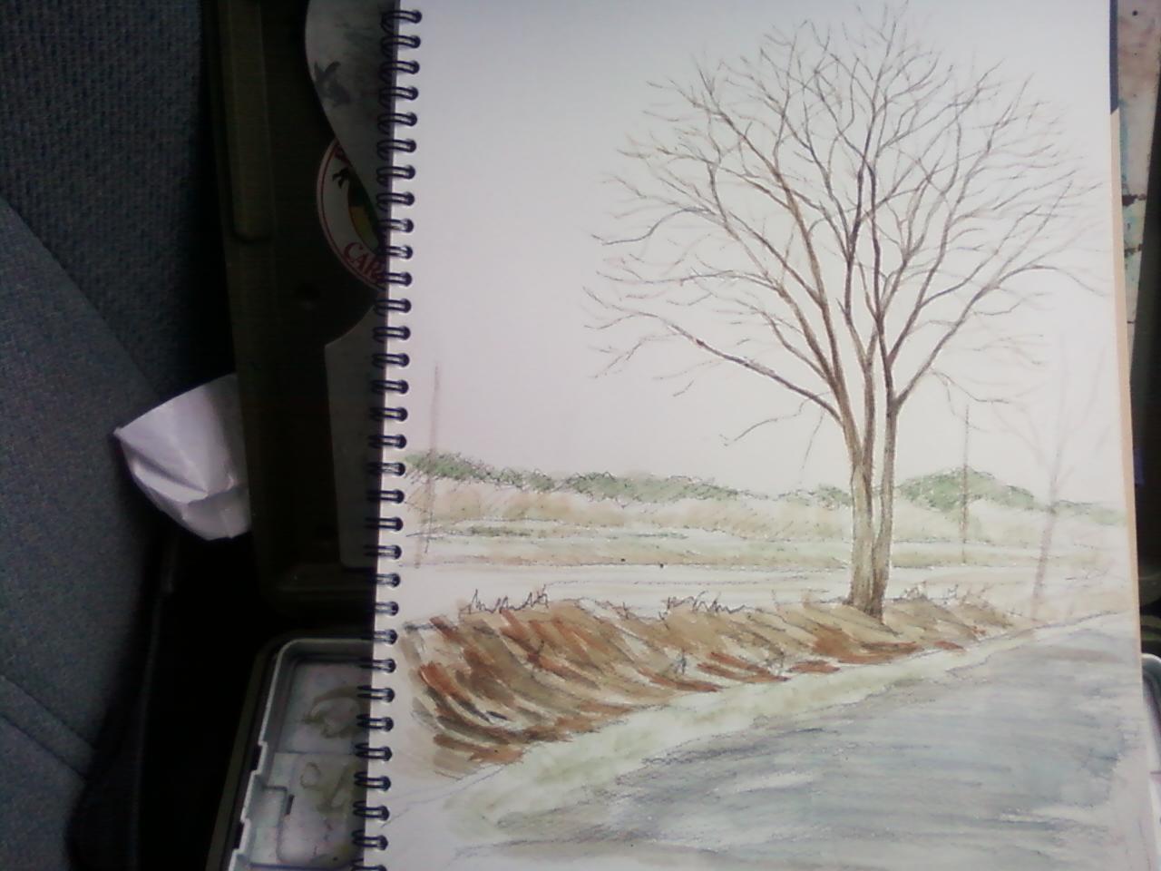 「樹をみつける。」旅